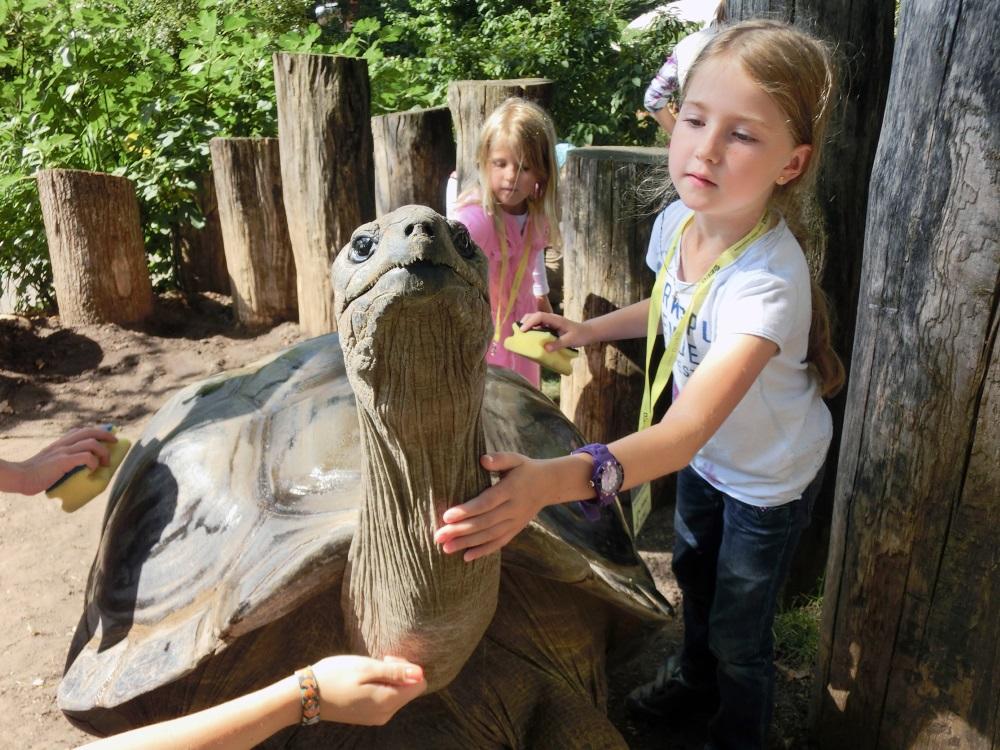 Ferienkinder bei den Schildkröten (002)