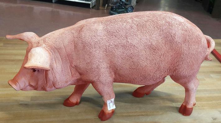 pol-da-wald-michelbach-neueinstellung-mit-bild-blickfang-gestohlen-diebe-schnappen-sich-pinkfarbene-