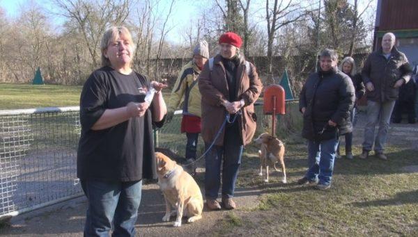 Schifferstadt – Achtung Hundebesitzer – Giftköder ausgelegt