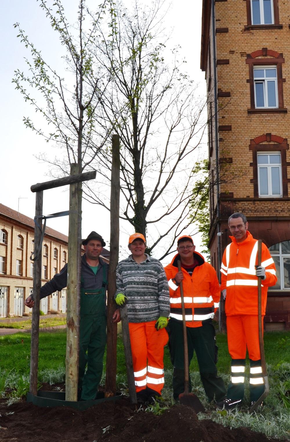 Presse-Info 18_Baumpflanzung Wohnpark Gruppe (002)