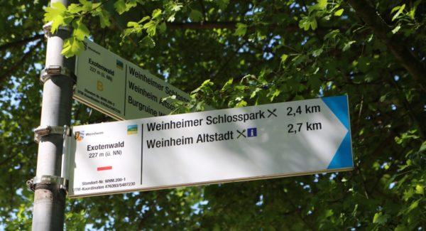 Weinheim – Blühende Berge durchwandern