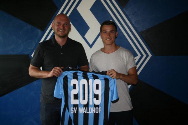 Mannheim – SVW verpflichtet Raffael Korte