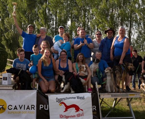 Ludwigshafen – Flyball-Meisterschaft des VdH Oggersheim erfolgreich bei der Flyball-EM in Belgien