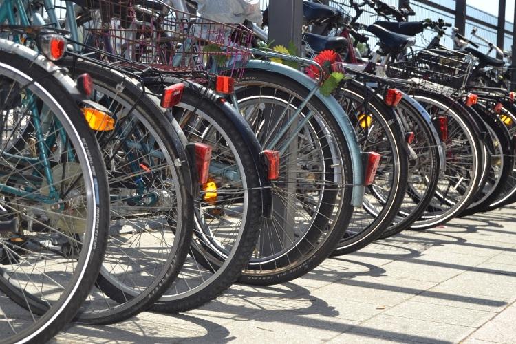 Info 450 Fahrradkurs für Frauen (002)