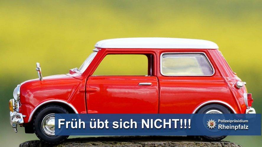 Bild: PP Rheinpfalz