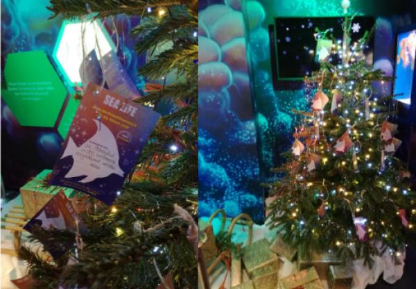 Speyer – Merry Fishmas – Wünsche für die Meere 2018