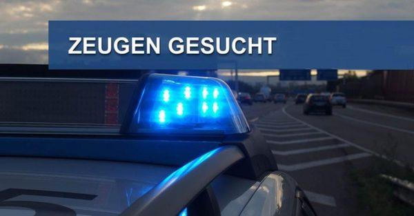Wiesloch / Walldorf – Unbekannte legen mehrere große Äste auf Bahngleise! ICE beschädigt