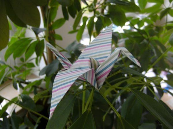 Rhein-Pfalz-Kreis – Japanische Papier-Kunst Origami – Vielfältiges Falten
