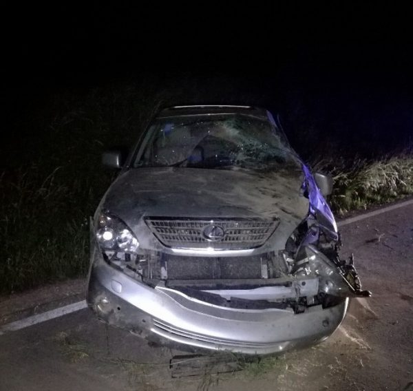 Worms – Verkehrsunfall infolge Alkoholgenusses
