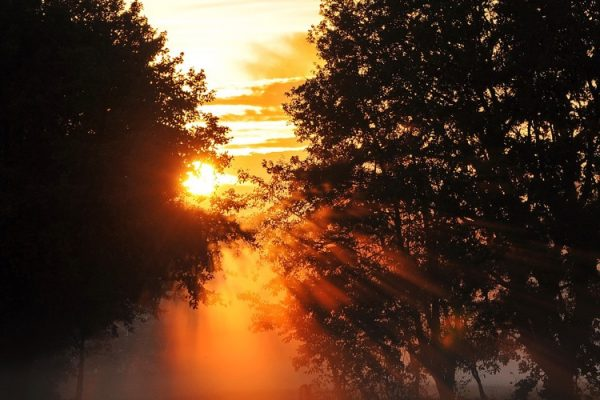 Heppenheim – Wanderung auf dem Nibelungensteig für Frühaufsteher