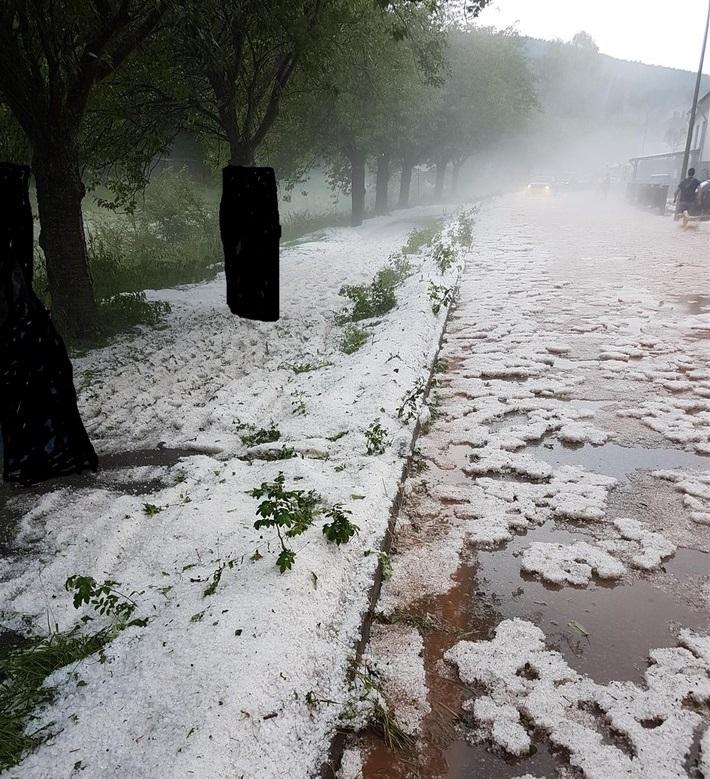 Wetter Walsheim