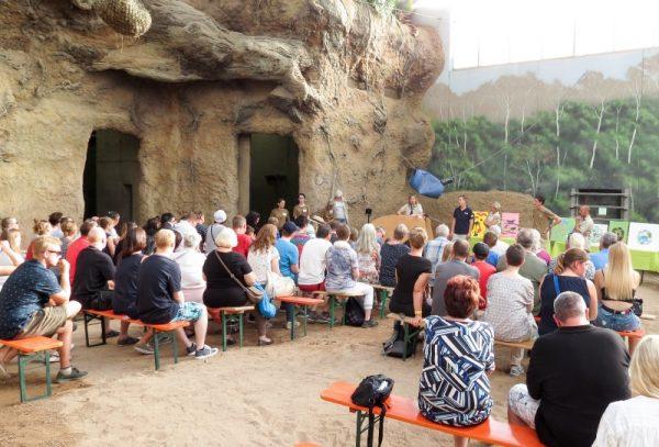 Heidelberg – Welt-Elefantentag im Zoo Heidelberg
