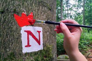 Heppenheim – Der Nibelungensteig ist beliebt wie eh und je
