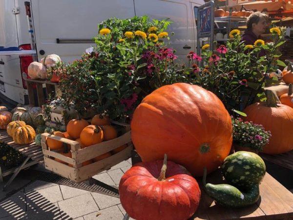 Frankenthal – Wochenmarkt – ein Stück Pfälzer Lebensfreude!