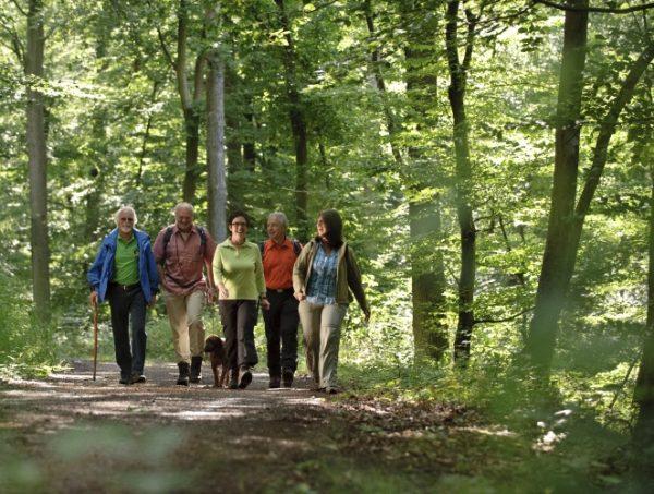 Kirchheimbolanden – Wanderauftakt am 06./07. April am Donnersberg und im Zellertal