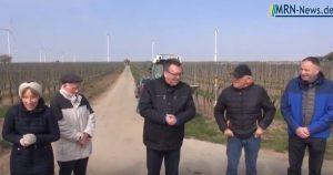 Rhein-Pfalz-Kreis – Rosenpflanzung im Landsratwingert mit Landrat Clemens Körner und der Weinprinzesssin Christina Schött