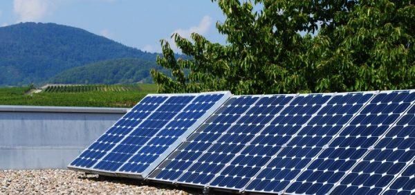 Landau – Die Kraft der Sonne nutzen – Solaraktionstag in Impflingen