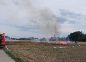Frankenthal – Auch die Feuerwehr Frankenthal hatte einen arbeitsreichen Samstag