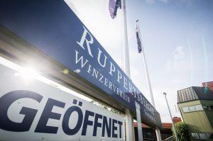 Ruppertsberg – Der Ruppertsberger Weinkeller zieht eine positive Bilanz zum Abschluss des Geschäftsjahres