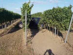 Niederkirchen – 19 jähriger landet mit seinem Auto im Wingert