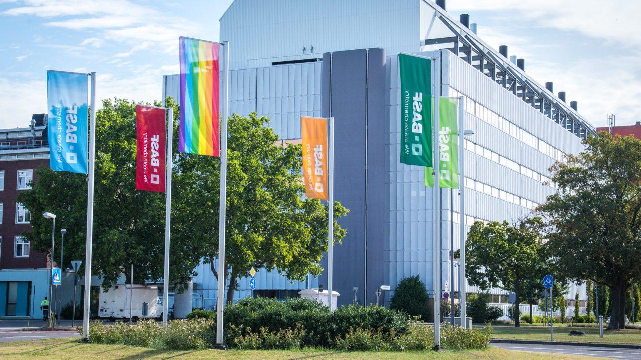 Ludwigshafen Basf Zeigt Flagge Metropolregion Rhein Neckar News Events