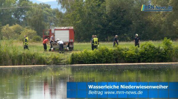 Rhein-Pfalz-Kreis / Haßloch – VIDEO NACHTRAG – Wasserleiche aus Niederwiesenweiher in Böhl-Iggelheim geborgen