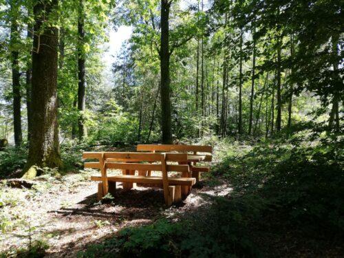 """Lambrecht – Zum Schutz der natürlichen Nacht im Pfälzerwald:  Infoweg im Rahmen des LEADER Projekts """"Sternenpark Pfälzerwald"""" entsteht bei Lemberg"""