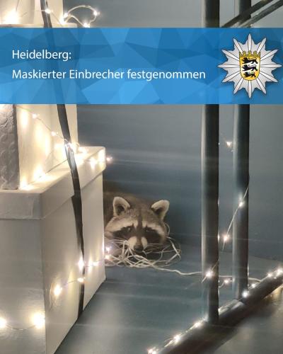 Heidelberg – Tierischer Einsatz in Modegeschäft
