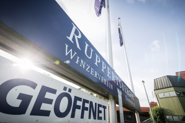 Ruppertsberg – Der Ruppertsberger Weinkeller zieht eine zufriedenstellende Bilanz zum Abschluss des Geschäftsjahres 2019/2020