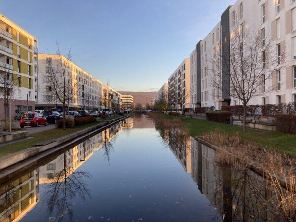Heidelberg – Bahnstadt: Arbeiten für Wasserbecken-Umbau zwischen Rehovot- und Cambridgestraße starten Bäume werden ausgepflanzt – Baubeginn im Juli