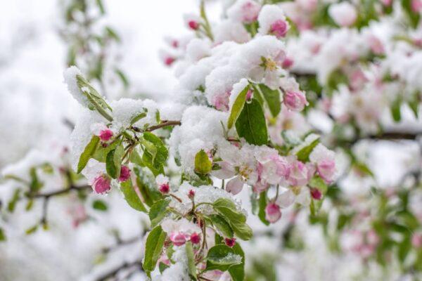 Ludwigshafen – Kühler Frühlingsstart Normalfall