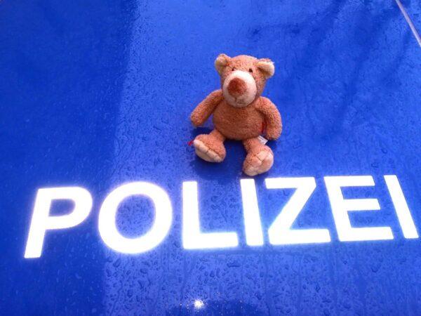 Landau – Fahndungserfolg der Polizei – Frau, die ein Kaninchen über den Zaun in den Zoo warf konnte ermittelt werden