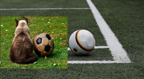 Karlsruhe – Fussball: Saison 2020/21 im Badischen Fußballverband ist beendet