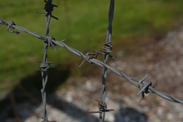 """Ludwigshafen – """"Kunst im Lager Gurs"""": Gesprächskonzert aus dem Ernst-Bloch-Zentrum live im Internet"""