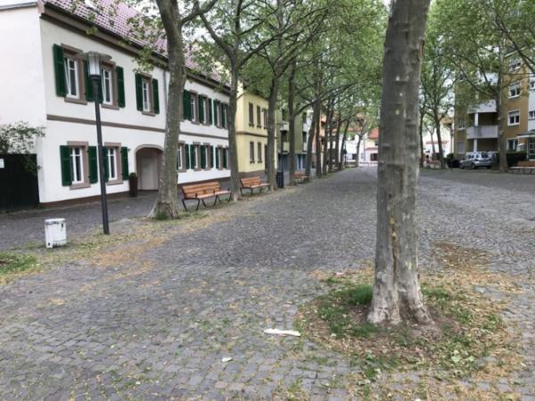 Speyer – Fischmarkt mit neuem Mobiliar ausgestattet