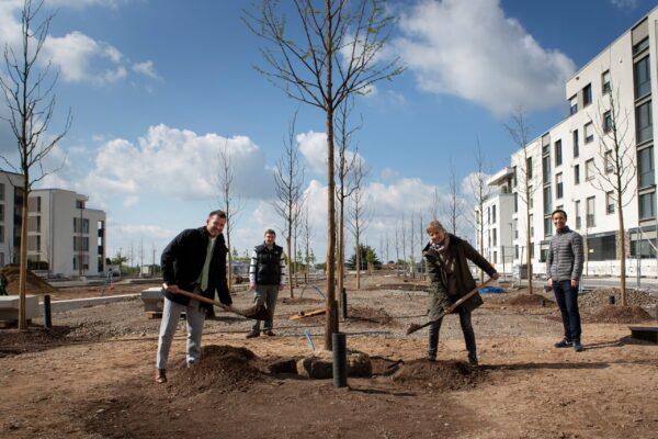 Heidelberg – Pfaffengrunder Terrasse: Neuer Bahnstadt-Platz bekommt 125 neue Bäume Hochstämme werden automatisch bewässert – Platz mit den meisten Bäumen im Stadtteil