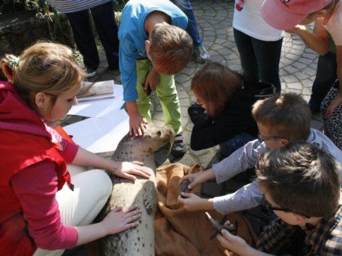 Landau – Bildungspatinnen und -paten für die Zooschule Landau gesucht