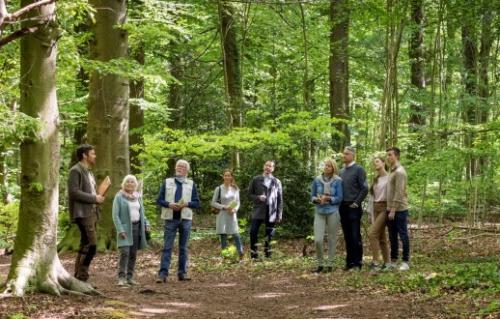Dudenhofen – Waldführungen im FriedWald Dudenhofen wieder möglich