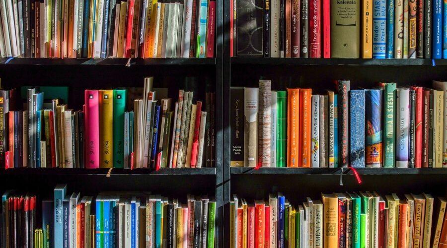 Frankenthal – Stadtbücherei digital zur Ausleihe von digitalen Medien