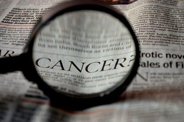 Heidelberg – Ihr Weg durch die Krebserkrankung – Neue Broschüre des Krebsinformationsdienstes