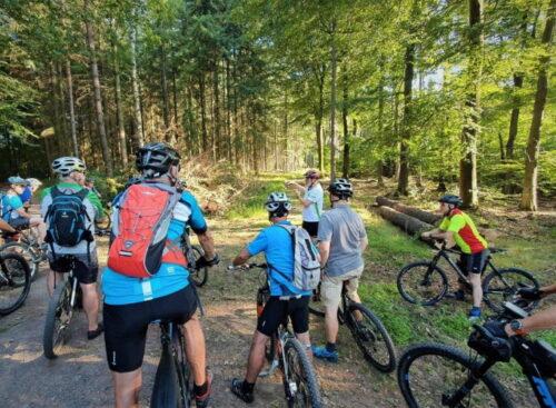 Kirchheimbolanden – Zusatztermin: Geführte Mountainbike-Tour am 21. August 2021 Alten Forstnutzungen auf der Spur